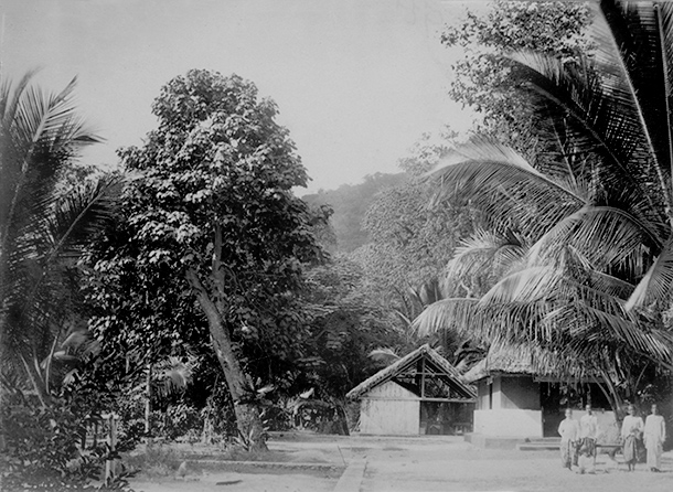 Clunies-Ross compound in Flying Fish Cove 1896.