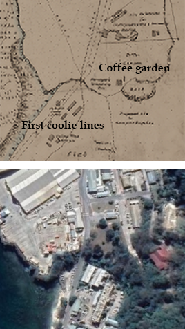 Map of first coolie lines in Flying Fish Cove